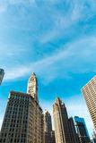 Chicago downtown in Illinois, USA Royalty Free Stock Photography