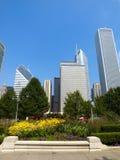 chicago drapacz chmur Obraz Stock