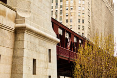 Chicago elevated el train moving along tracks during spring blooming season Royalty Free Stock Photography