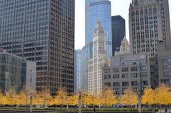 Chicago en automne Photographie stock libre de droits