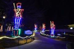 Chicago, EUA 31 de dezembro de 2016 Jardim zoológico Ligths Fotografia de Stock Royalty Free