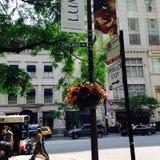 Chicago Stock Photo