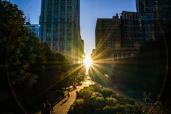 Chicago. Feel small but part of something big Royalty Free Stock Images