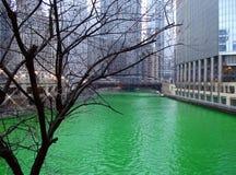 chicago flod Arkivbild