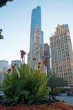 Chicago: i fiori, l'edificio di Wrigley e Trump si elevano il 22 settembre 2014 Fotografia Stock