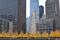 Chicago i nedgången Royaltyfri Fotografi