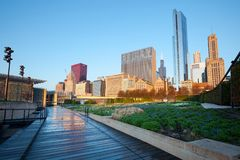 The Lurie Garden at Millennium Park in Chicago. Chicago, Illinois, United States - May 06, 2011: The Lurie Garden at Millennium Park and Michigan Avenue Skyline Stock Photo