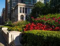 Chicago kulturell mitt Arkivfoton