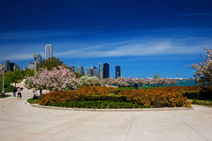 Chicago Lakefront garden. Including a piece of the skyline Royalty Free Stock Photography