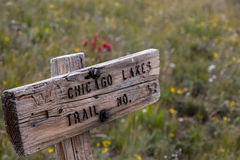 Chicago Lakes Trail No. 52. One of the old signs for the trail that leads to Chicago Lakes in the Mount Evans Wilderness, surrounded by wildflowers Royalty Free Stock Images