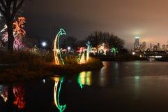 Chicago Lincoln Park Light Festival Royaltyfri Foto