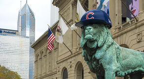 Chicago lion with Cubs hat Stock Image