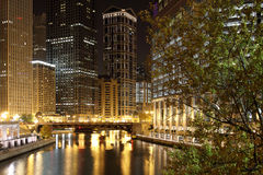 Chicago na noite Fotos de Stock Royalty Free