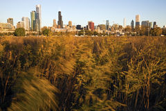 Chicago from Northerly Island Royalty Free Stock Photography