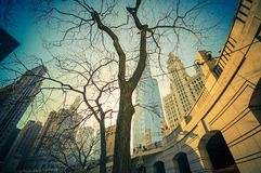 The Chicago Place. Downtown Chicago, Illinois, United States Royalty Free Stock Photos