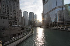 Chicago river. Beautiful in fall Royalty Free Stock Images