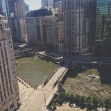 Chicago river. Green chicago river stock photos