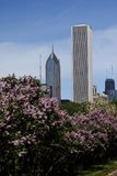 Chicago's AON tower. Chicago scene, including the AON tower Royalty Free Stock Photos