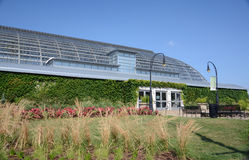 Chicago's Garfield Park Conservatory Stock Photography