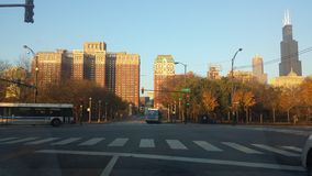 Chicago sikt Royaltyfri Foto