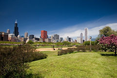 Chicago Skyline. Including Grant park Royalty Free Stock Image