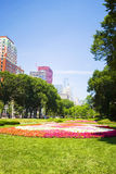 Chicago skyline behind a flowerbed Stock Photo
