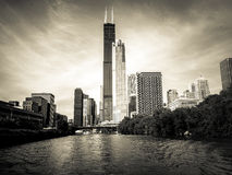 Chicago skyline Stock Photography