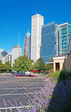 Chicago skyline seen from the park district of Michigan Lake shoreline Stock Photos