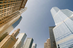 Chicago skyscrapers. Chicago Towers from a different perspective. A contrasting sight of old and new architecture royalty free stock photos