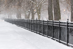 Chicago Snow Storm Royalty Free Stock Image