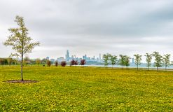 Chicago south lake shore, spring landscape of green field with yellow flowers, and trees. Stock Photos