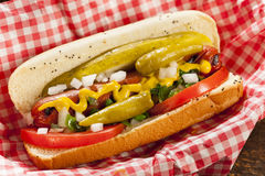 Free Chicago Style Hot Dog Royalty Free Stock Images - 33073919