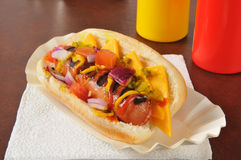 Chicago style hot dog Royalty Free Stock Photo