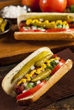 Chicago Style Hot Dog Stock Images