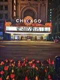 Chicago teater royaltyfri fotografi