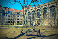 Chicago-Universitätsgelände Lizenzfreies Stockbild