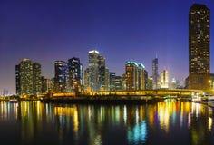 Chicago van de binnenstad, IL in de nacht Royalty-vrije Stock Afbeelding