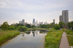 Chicago view zoo. View of Chicago skyline from Lincoln Park Zoo Stock Photography