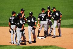 High Fives for the White Sox stock photos