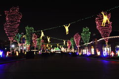 Chicago Zoo Lights. Chicago, USA, 31st December 2016 : To walk through the luminous display at New Year's Eve at Lincoln Park Zoo in Chicago Stock Photography