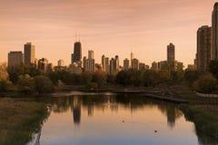 Chicagowska linia horyzontu Widzieć od Lincoln parka zdjęcie royalty free