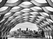 Chicagowski pejzaż miejski od natury Boardwalk w Lincoln parku Czerń & biel zdjęcie stock