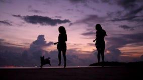 Chicas jóvenes bonitas que corren con el perro en la puesta del sol hermosa en la playa HD a cámara lenta Phangan, Tailandia almacen de metraje de vídeo