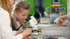 Chicas jóvenes con el microscopio en el laboratorio de investigación de la escuela que mira en el microscopio almacen de metraje de vídeo