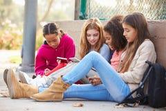 Chicas jóvenes que usan las tabletas de Digitaces y los teléfonos móviles en parque imágenes de archivo libres de regalías