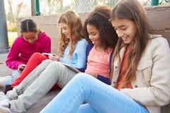 Chicas jóvenes que usan las tabletas de Digitaces y los teléfonos móviles en parque Imagen de archivo libre de regalías