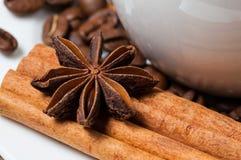 Chicchi, cannella ed anice di caffè Macro Fotografia Stock Libera da Diritti