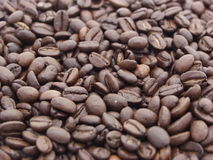 Chicchi di caffè. Immagini Stock Libere da Diritti