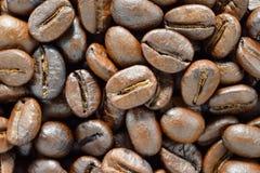Chicchi di caffè Fotografia Stock Libera da Diritti