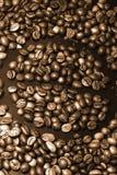 Chicchi di caffè Immagine Stock